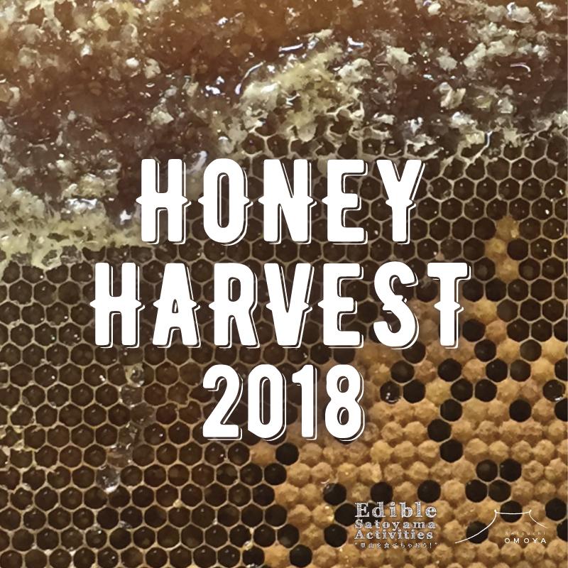 HONEY HARVEST 2018